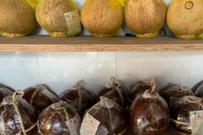 Rượu dừa bến tre giá bao nhiêu